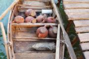 plastico archeologico ricostruzione imbarcazione etrusca