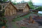 San Rocchino Abitato Etrusco plastico archeologico
