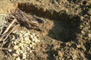 fosse neolitiche